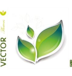 green leaves design vector image