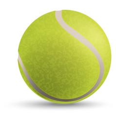 a tennis ball vector image