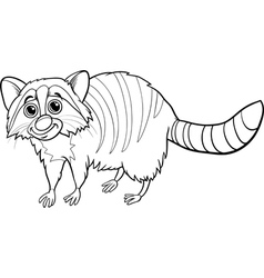 Raccoon animal cartoon coloring book vector