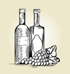 set red wine bottles vector image