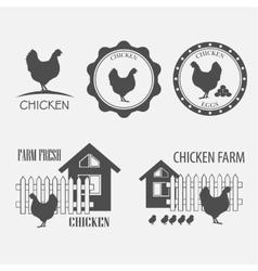 chicken farm and eggs vector image