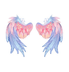 Delicate angel wings vector