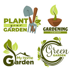 Plant garden gardening tools and leaves or sprouts vector