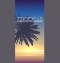 summer tropical background palm tree on sunset vector image