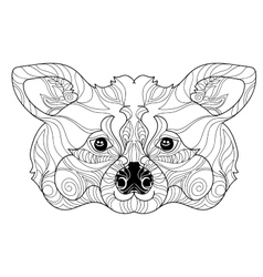 Zentangle raccoon head doodle hand drawn vector image