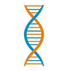DNA and molecule symbol vector image vector image