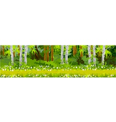 pathway in the forest panorama vector image