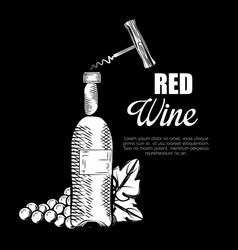 best wine bottle label vector image
