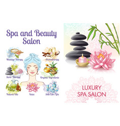 cartoon spa salon colorful concept vector image