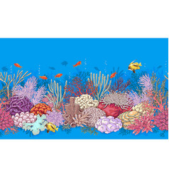 Coral reef and fishes pattern vector