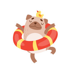 cute pug dog with lifebuoy funny friendly animal vector image