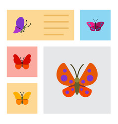 Flat moth set of archippus moth butterfly and vector