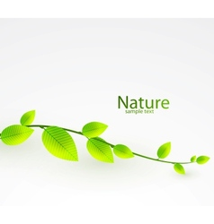 fresh green leaves abstract background vector image