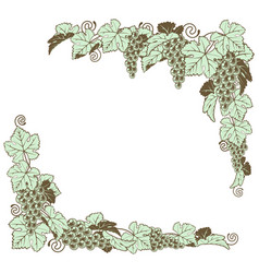 grape vine border design vector image