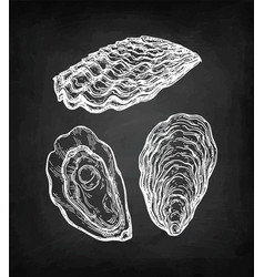 oysters chalk sketch vector image