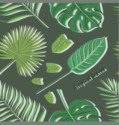 tropical leaves set pattern vector image