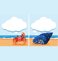 Two scenes with crab and shell vector