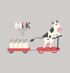 cheerful cow delivers milk bottles on a scooter vector image vector image