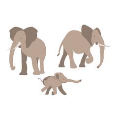 A set of elephant vector