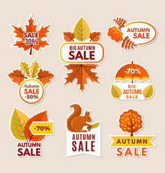 autumn labels at sales banners with leaves vector image