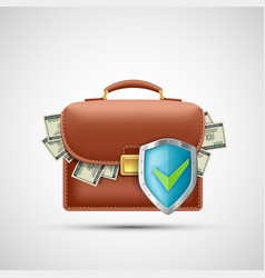 Financial briefcase with paper currency dollars vector