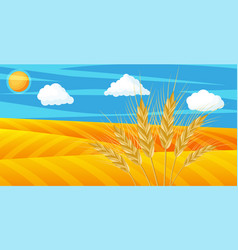 wheat in fields nature landscape with ear harvest vector image