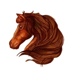 Brown horse head with wavy mane portrait vector