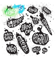 Spray paint collection of ink splatter vegetables vector