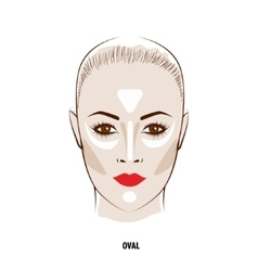 Contour and Highlight makeup vector image