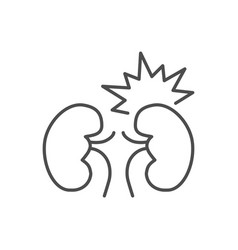 kidney pain related thin line icon vector image