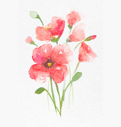 Pink poppy flower watercolor spring seasonal vector
