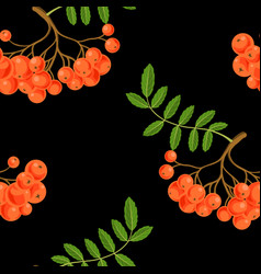 seamless pattern with rowan berries vector image