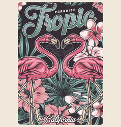 tropical vintage colorful poster vector image