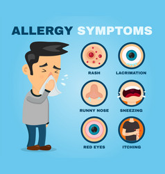 allergy symptoms problem infographic vector image