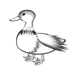 A monochrome sketch of a duck vector