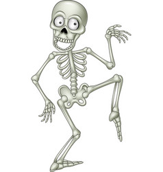 Cartoon funny human skeleton dancing vector