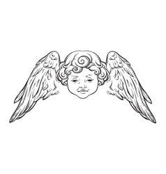cherub cute winged curly smiling baboy angel vector image