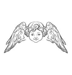 cherub cute winged curly smiling baby boy angel vector image