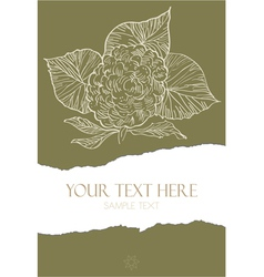 Flower on torn paper vector image vector image
