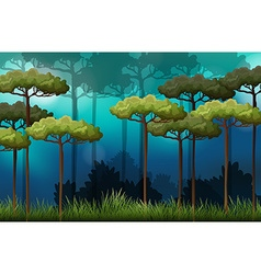 Forest scene with trees and field vector