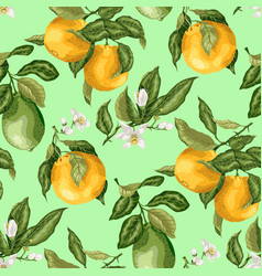 seamless pattern summer citrus fruit branches of vector image