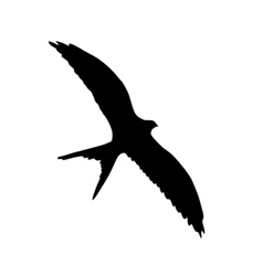 Silhouette of flying swallow vector