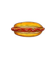 Sketch hot dog with frankfurter sausage vector