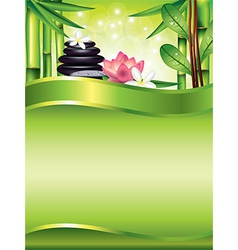 spa vertical background vector image vector image