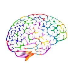 Brainwaves vector image vector image