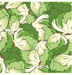 seamless pattern hand drawn lettuce vector image