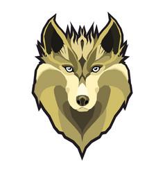 wolfs head low poly geometric polygonal flat vector image