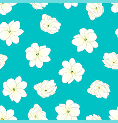 arabian jasmine on blue teal background vector image