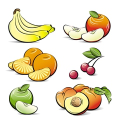 Drawing set of different color fruits vector