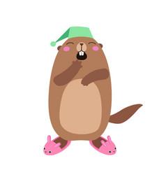 Groundhog in bunny slippers flat vector